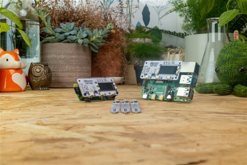 Grow HAT Minis attached to a Pi Zero and a Pi 4, and three Grow moisture sensors