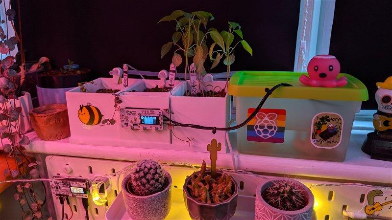 A custom Grow setup with 3D printed pots