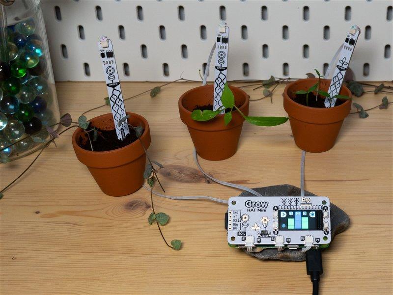 Grow monitoring setup
