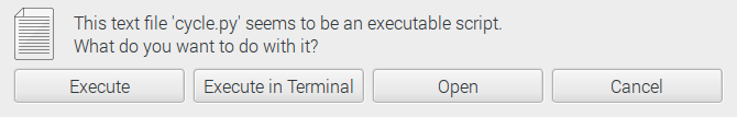 Choose execute in terminal